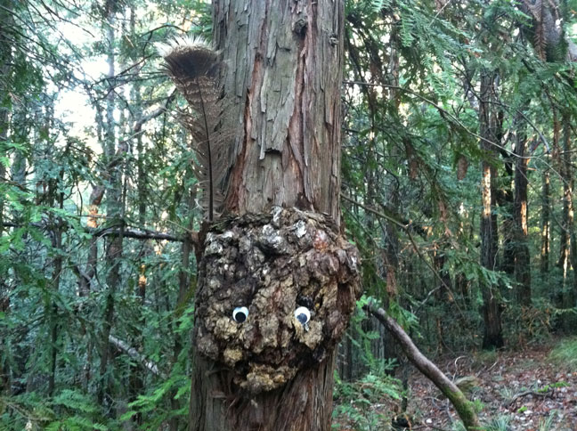 tree-face.jpg-small