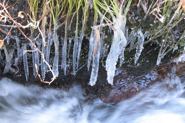 Icy stream along the way