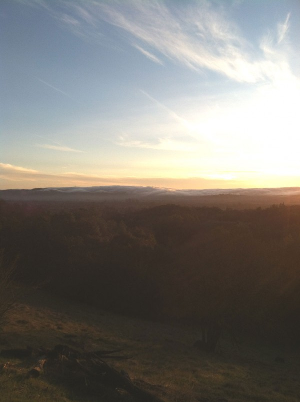 Last evening I took a hike on the Sonoma Overlook Trail.  This shows the fog coming in from Petaluma to the west.